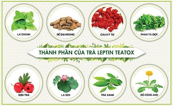 trà giảm cân leptin teatox chính hãng,trà giảm cân leptin teatox có tốt không,trà giảm cân leptin teatox gia bao nhieu,trà giảm cân leptin teatox mua ở đâu,trà giảm cân leptin teatox review,cách sử dụng trà giảm cân leptin teatox,trà giảm cân leptin teatox có hiệu quả không,giá trà giảm cân leptin teatox,trà giảm cân detox leptin teatox