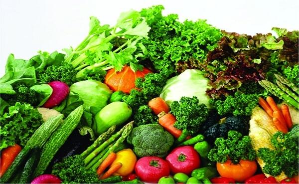 chế độ ăn kiêng giảm mỡ bụng cho nữ, thực đơn ăn kiêng giảm mỡ bụng cho nữ, cách ăn kiêng giảm mỡ bụng cho nữ, ăn kiêng giảm mỡ bụng cho nữ