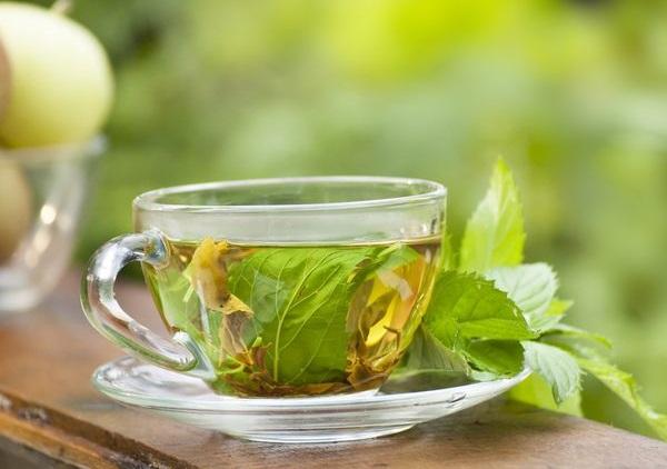 cách giảm cân bằng (với) cách (uống) làm detox nước, tinh dầu trà lá húng bạc hà có giúp giảm cân không