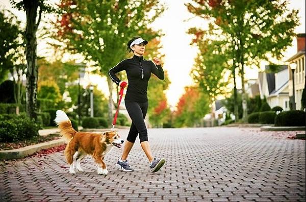 Đi bộ có tác dụng giảm cân không