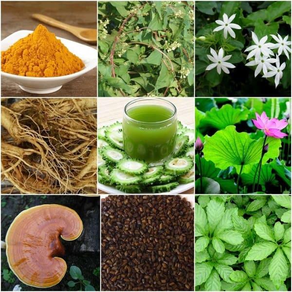 trà collagen giảm cân,uống collagen có giảm cân không,diệp lục collagen có giảm cân không,trà giảm cân collagen giá bao nhiêu,uống diệp lục collagen có giảm cân không,collagen giảm cân nhật bản,uống collagen giảm cân