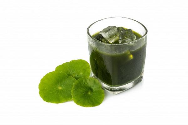uống rau má có giảm cân không, nước rau má giảm cân, uống nước rau má giảm cân, giảm cân bằng rau má, rau má có giảm cân không, uống rau má giảm cân, uống rau má giảm cân không, sinh tố rau má giảm cân, giảm cân với rau má