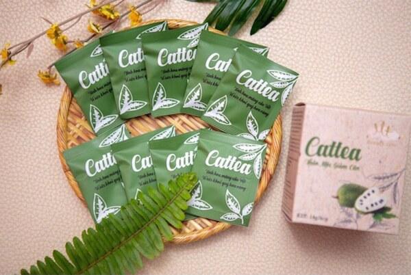 trà giảm cân cattea , review trà giảm cân cattea, trà giảm cân cattea có tốt không, cách sử dụng trà giảm cân cattea, trà giảm cân cattea giá bao nhiêu