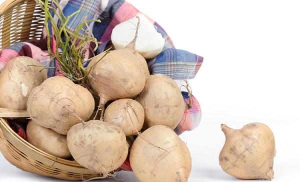 100g củ đậu chứa bao nhiêu calo? Tuyệt chiêu ăn củ đậu giảm cân nhanh tại nhà